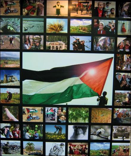 פסיפס תצלומים פלסטיניים